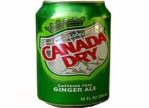 Kosher Canada Dry Ginger Ale
